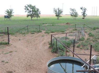 98 acres in Wilbarger County