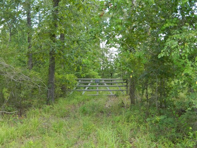 37 acres in Red River County