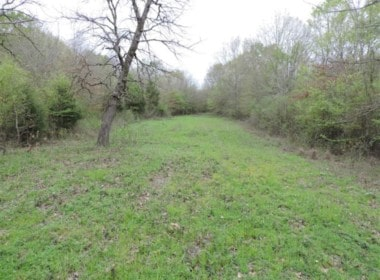 76 acres in Wood County