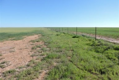 80 acres in Wilbarger County