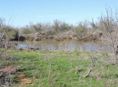 160 acres in Wilbarger County