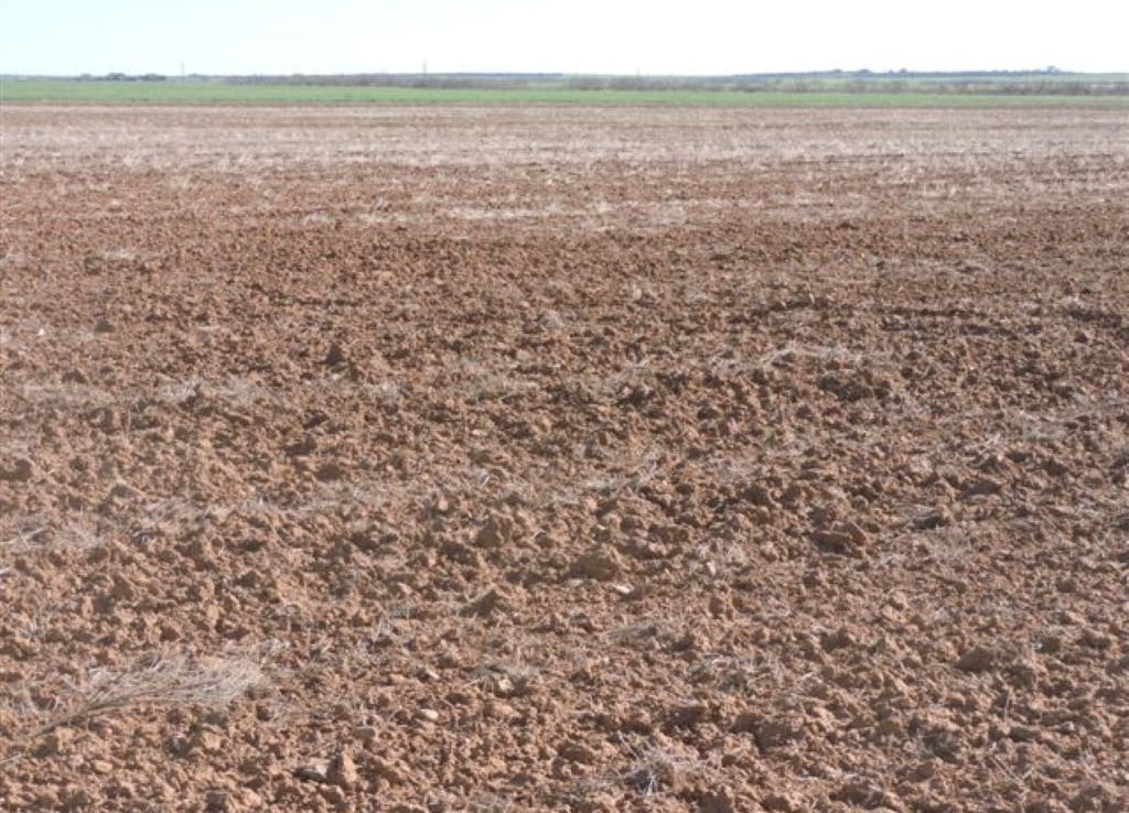 96 acres in Wilbarger County