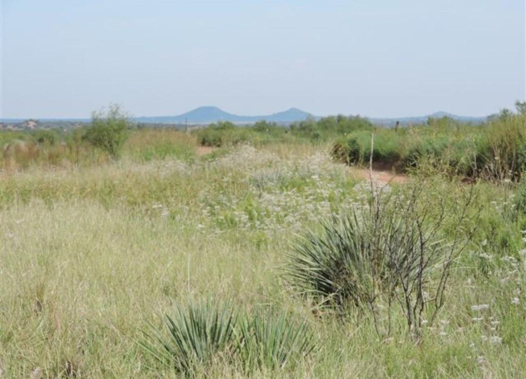 120 acres in Foard County