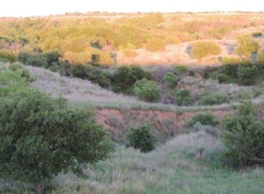 270 acres in Wilbarger County