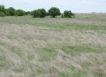 50 acres in Clay County