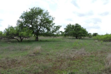 480 acres in Hardeman County