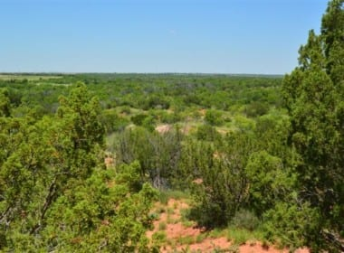 598 acres in Baylor County