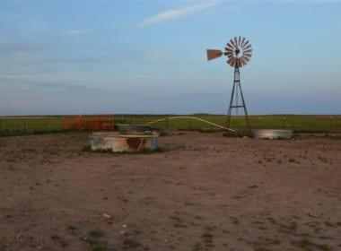 343 acres in Hardeman
