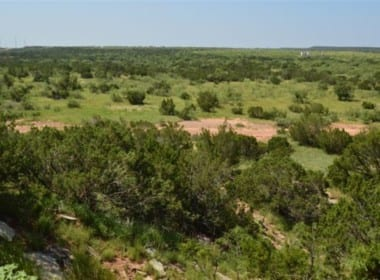 679 acres in Hardeman County