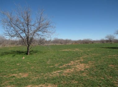 546 acres in Baylor County
