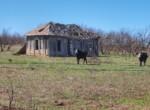 66 acres in Foard County