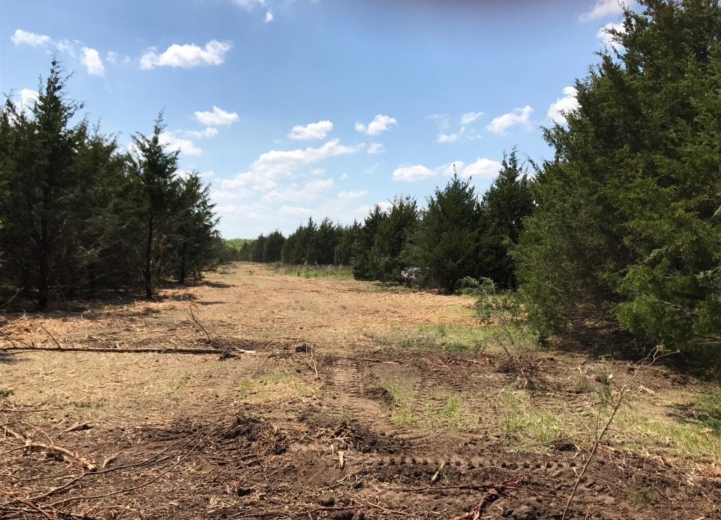 33 acres in Lamar County