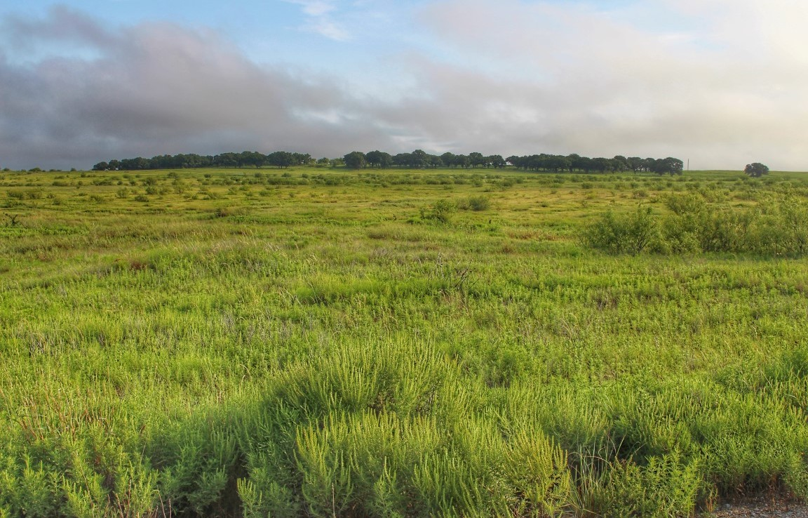 300 acres in Montague County