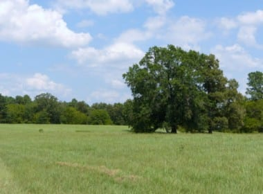 621 acres in Red River County