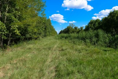 62.3 acres in Red River County