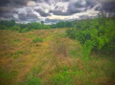 419 acres in Palo Pinto/Stephens County
