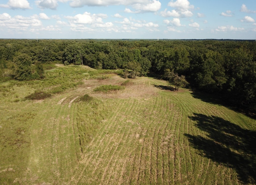 137 acres in Bowie County