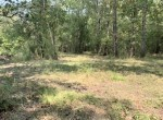 65 acres in Red River County