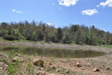 413 acres in Jack County