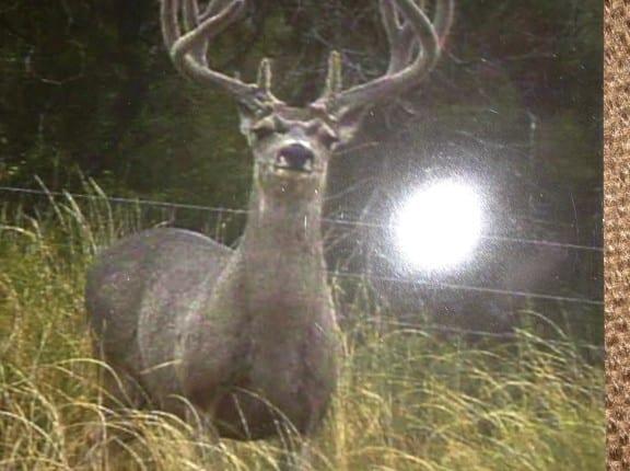 1,764 acres in Hardeman County