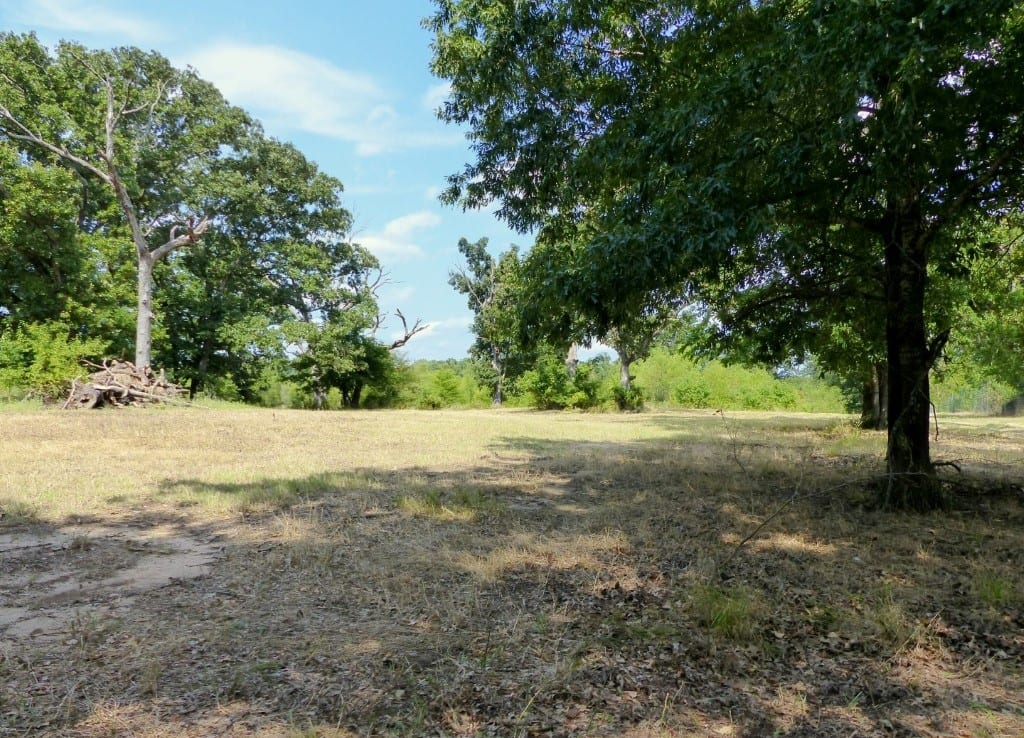 339 acres in Hopkins County