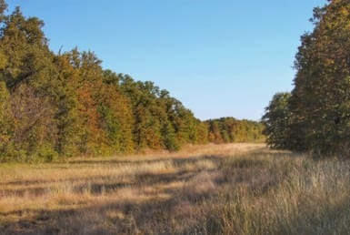 108 acres in Parker/Jack County