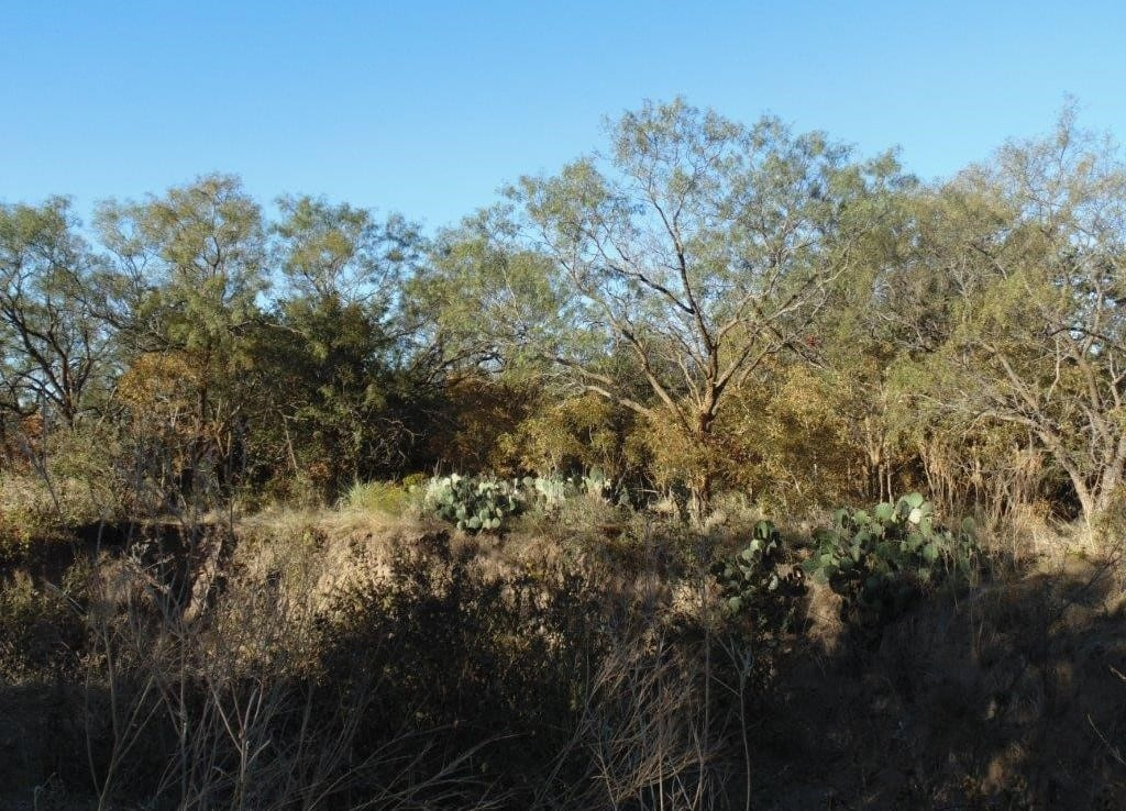 20 acres in Runnels County
