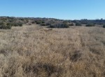 3,655 acres in Knox/King County