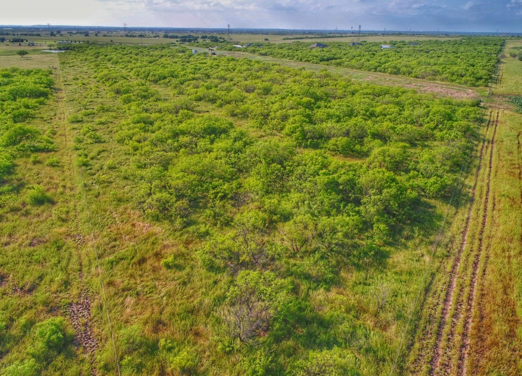 11.4 acres in Archer County
