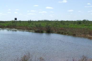4173 acres in Foard County