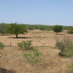 3,830 acres in Baylor County