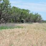 262 acres in Knox County
