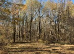 42 acres in Red River County
