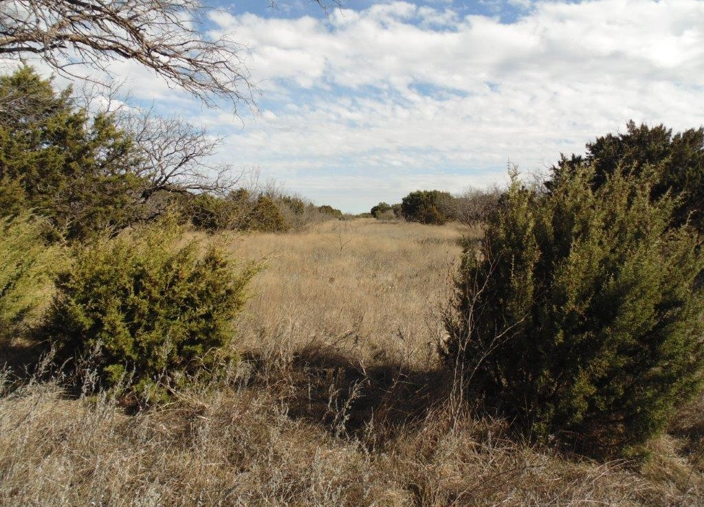 20 acres in Taylor County