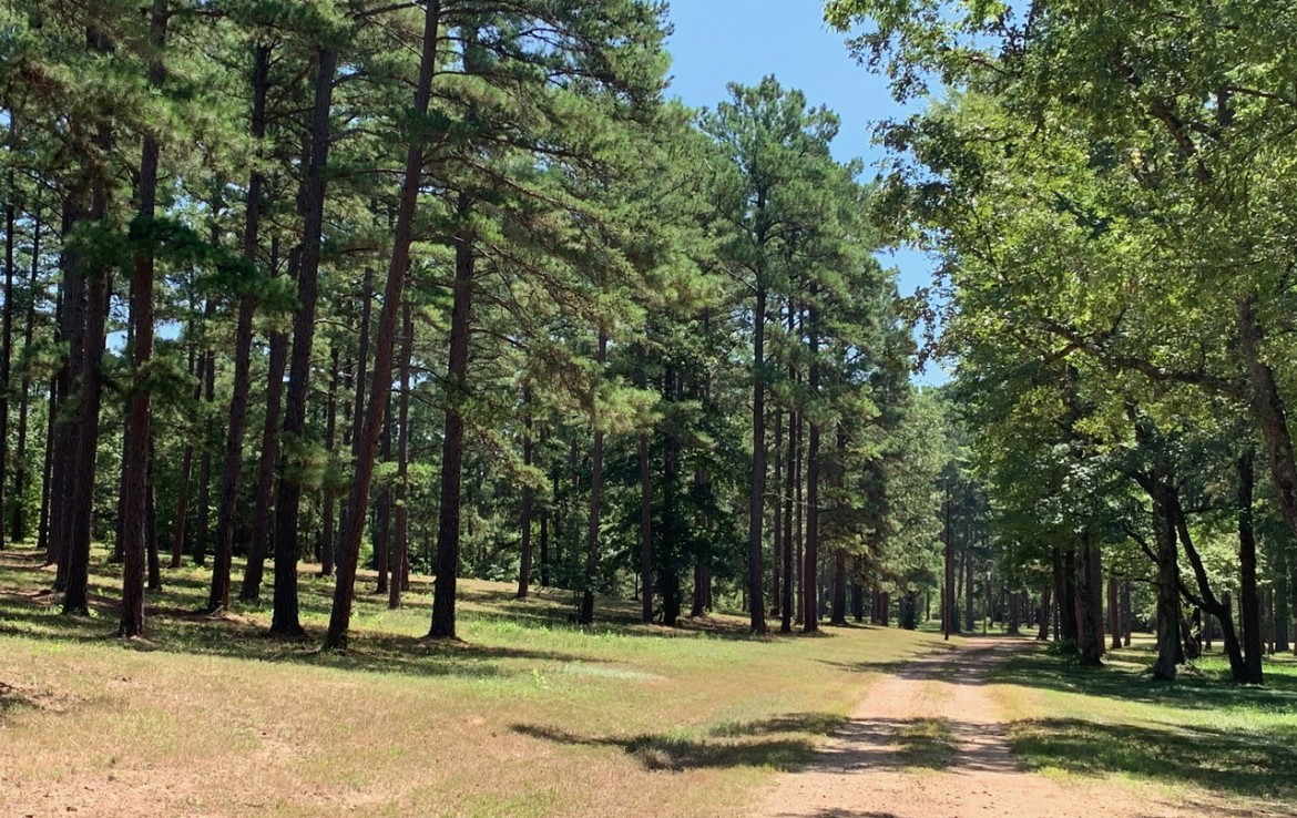 124.322 acres in Upshur County