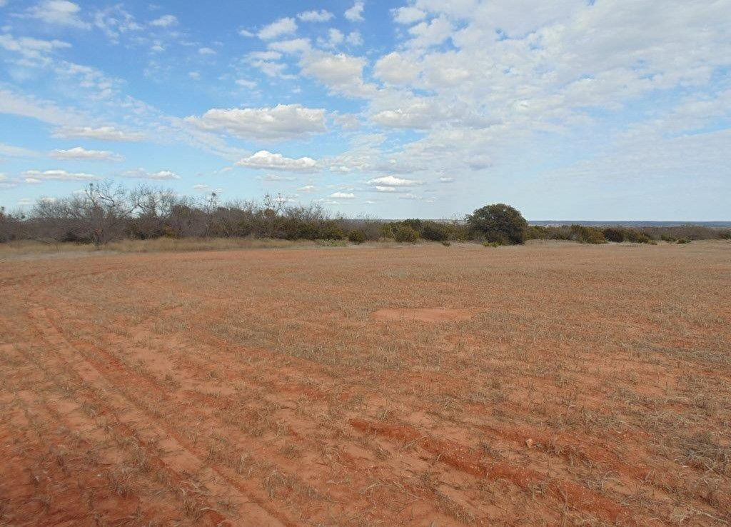 31 acres in Taylor County