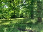 12 acres in Titus County