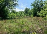 20 acres in Titus County