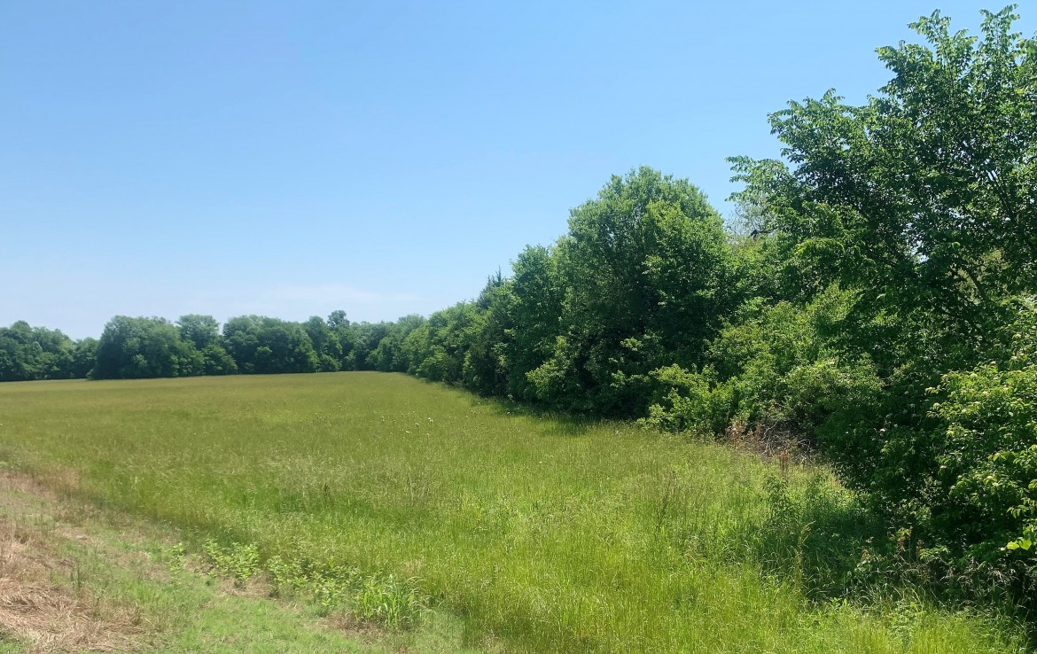 12 acres in Red River County