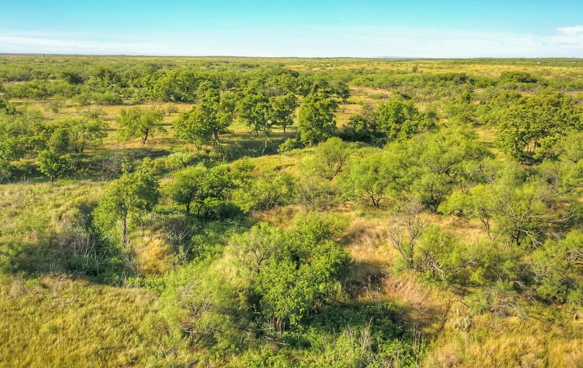 383 acres in Baylor County