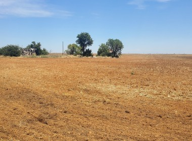 160 acres in Knox County