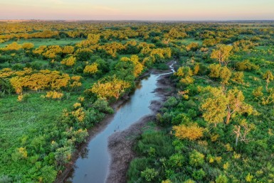 1,580 acres in Wichita County
