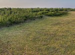 247 acres in Hardeman County