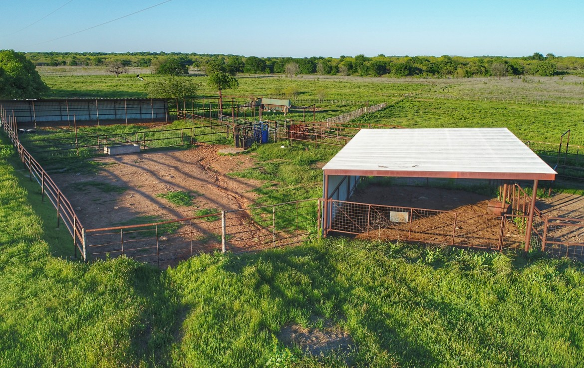 1203 acres in Young County
