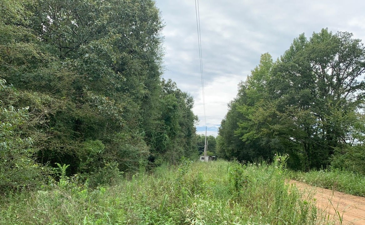 40 acres in McCurtain County