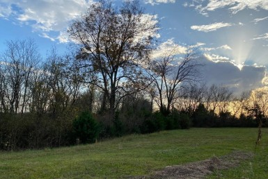 80 acres in Lamar County