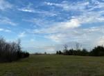 80 acres in Lamar County