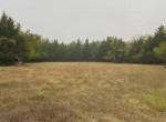 199 acres in Red River County