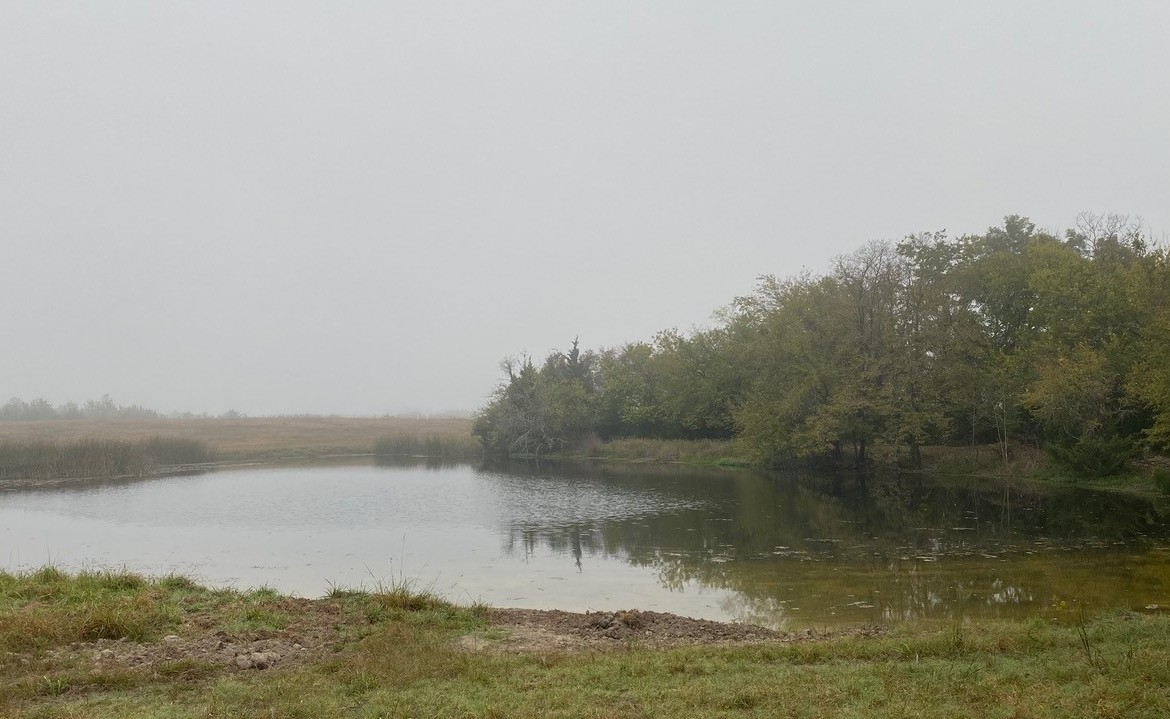 174 acres in Red River County