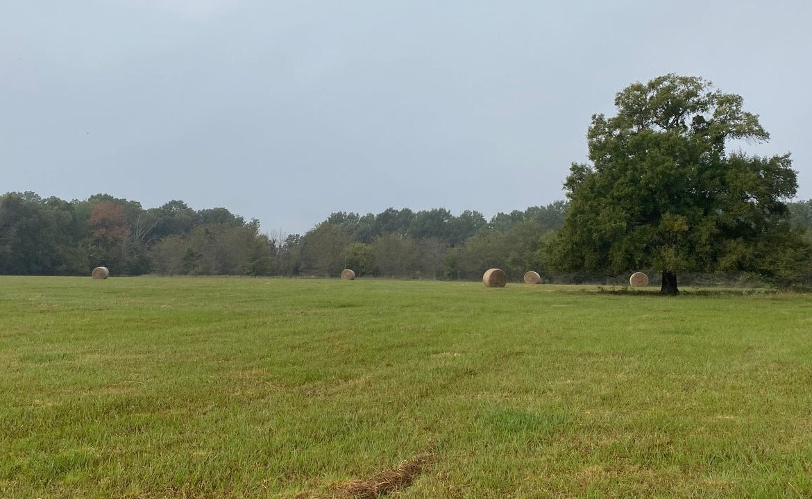 20 acres in Red River County
